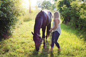 Header Blog: Mag jouw paard nee zeggen? Trainen met keuzevrijheid, paard, grondwerk, paard eet gras